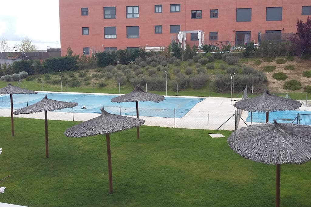 Swimming pools and green area