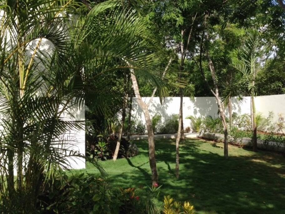 Our tranquil back garden