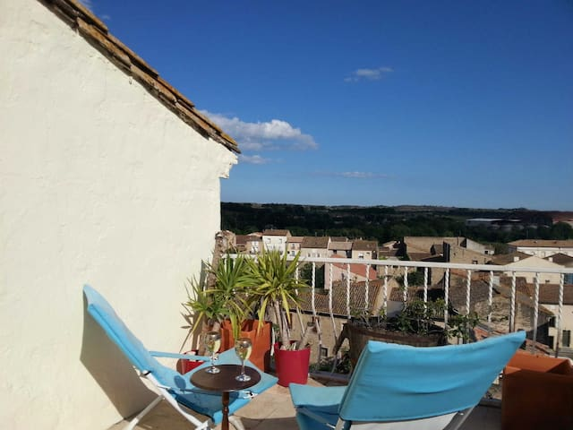 Vine views - suntrap terrace & view - Pouzolles - House