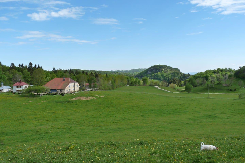 Vue d'ensemble de la ferme familiale du Domaine des Balzanes.