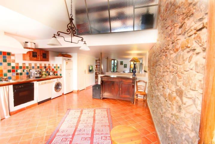 2 rooms loft with Terrace  - Antibes - Loft