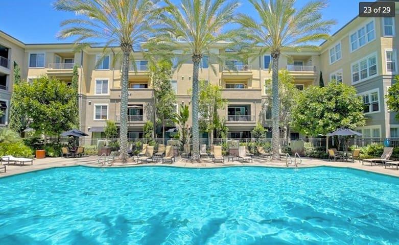 Resort Style Living / Modern / Disney / Beaches