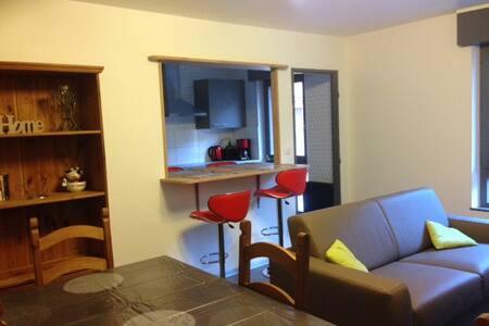 Appartement 2 pièces entièrement rénové ! - Kaysersberg