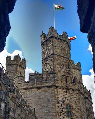 Palas Bach  opp Caernarfon Castle Town Centre