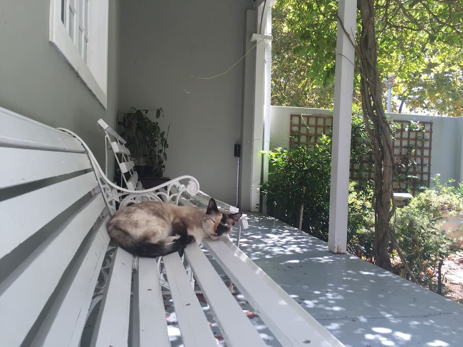 Lounge on the porch while being entertained by the cat, Gypsy