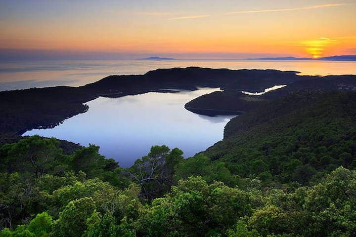 Sweet Mljet 2 - 1 room, 2 beds