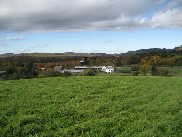 Larson Farm and Creamery