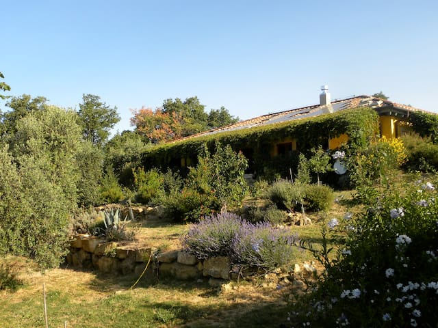 Bed&Breakfast Podere Vignolo - Scansano - Bed & Breakfast