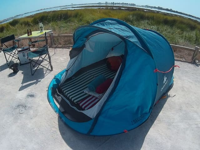 Tent, Camping equipment and Surfboards