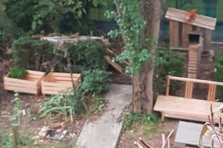 Salon-chambre avec jardin