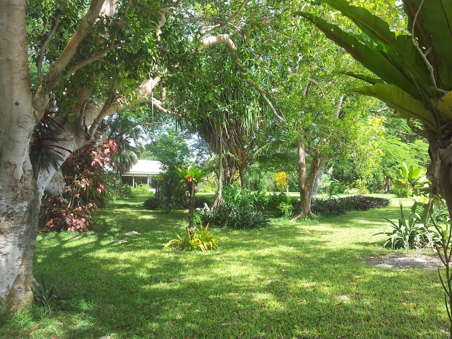 Lush tropical gardens surround the house for your complete privacy