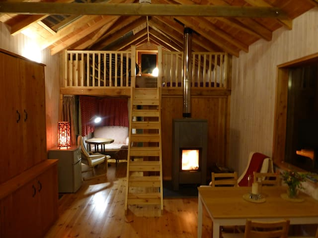 Cosy cabin with hot tub - Cilgwyn