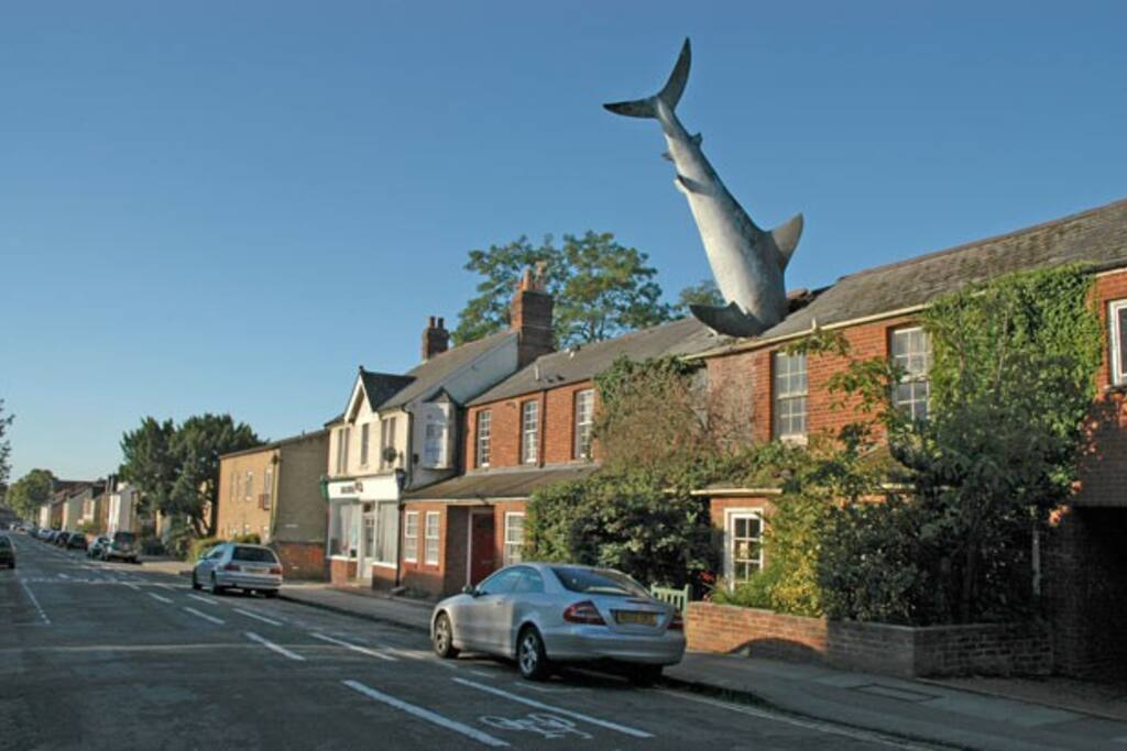 In Headington there is the ART House with a shark coming out