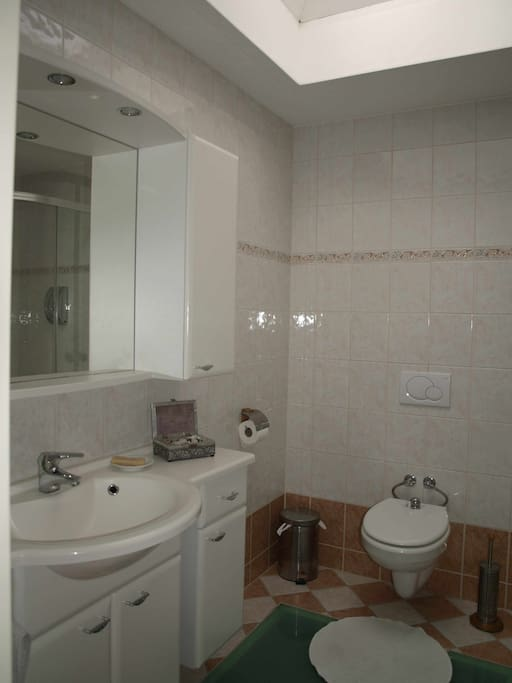 Your spacious, private bathroom with shower and toilet/bidet