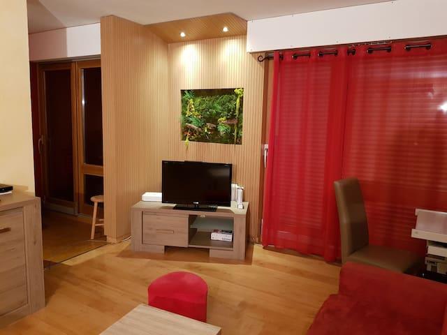 Joli Appartement 2p. calme centre ville sallanches