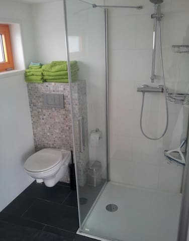 Bathroom and shower with towels