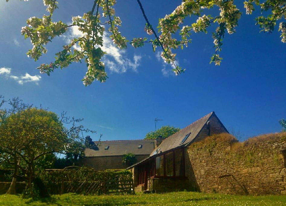 authentique maison bretonne renov e 60m2 jardin h uschen zur miete in saint laurent. Black Bedroom Furniture Sets. Home Design Ideas