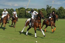 RCP POLO REAL CLUB