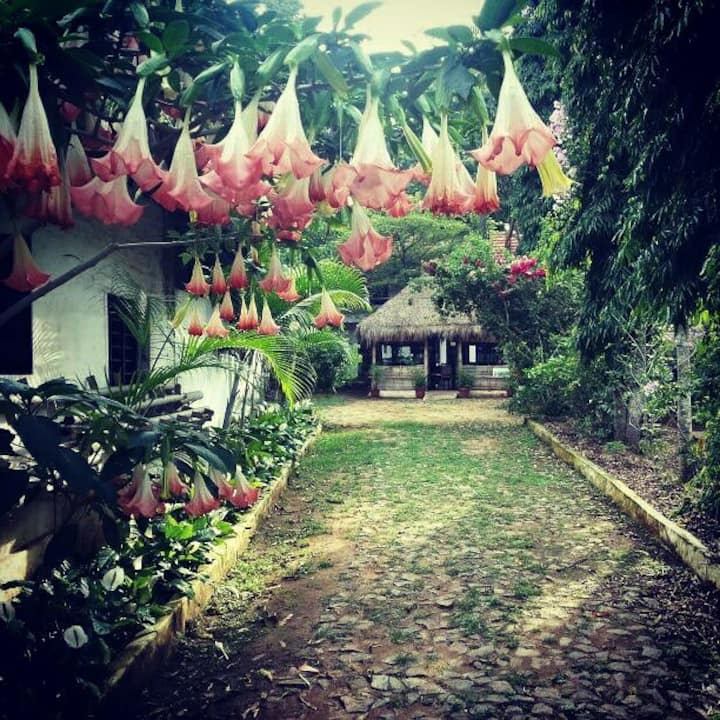 Jaivik Greens Estate Stay
