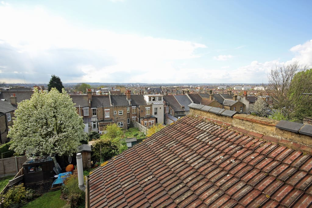 London rooftops and the pear tree in blossom