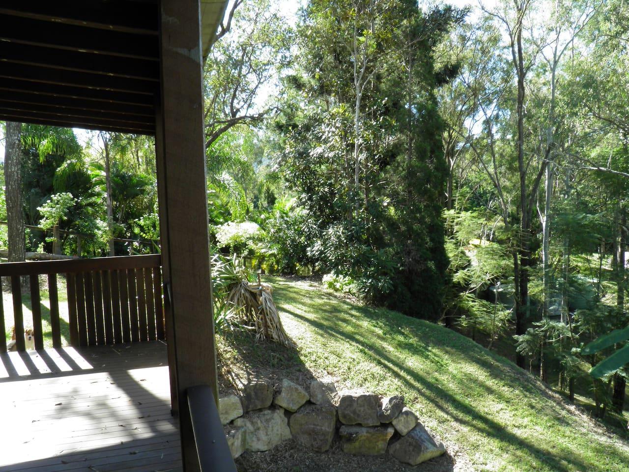 Set in the hinterland of Brisbane in the Australian Bush