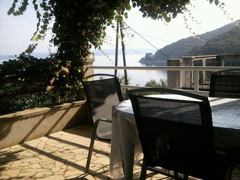 Terrace with a sea view.