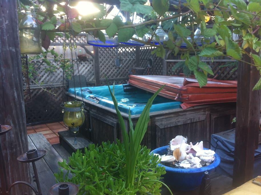 Ahh the hot tub