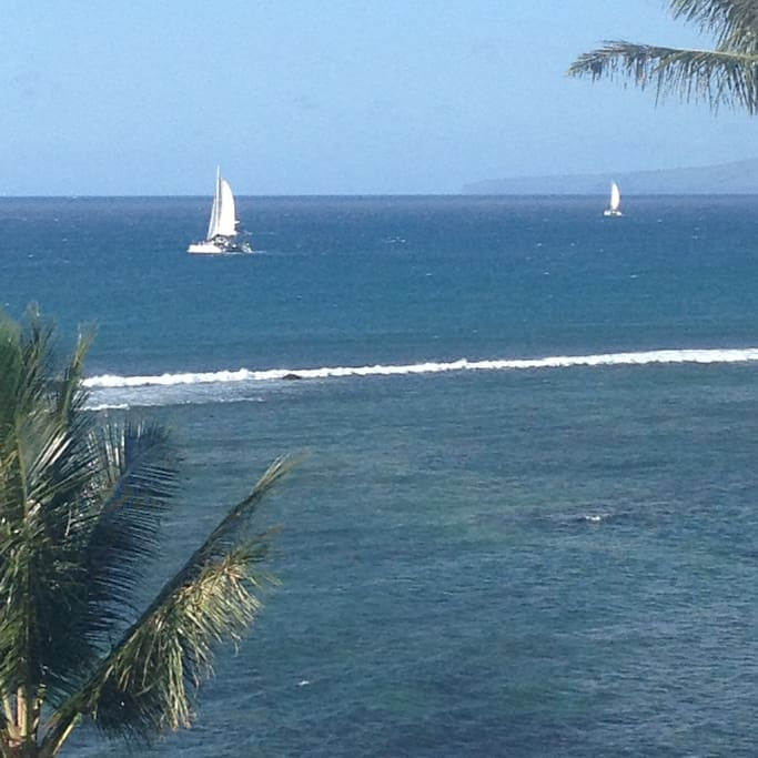 Watching the boats come and go from our lanai.