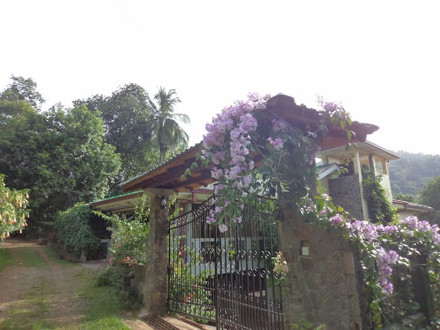 Beautiful Bungalow in the Hills - kandy - Bed & Breakfast