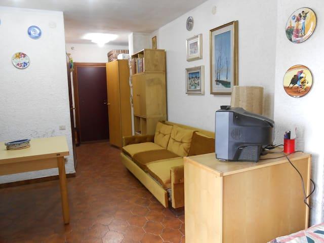 incantevole alloggio alpi marittime - Viola - 公寓