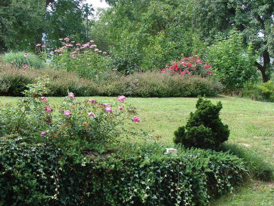 davanti a casa c'è un bel giardino curato.
