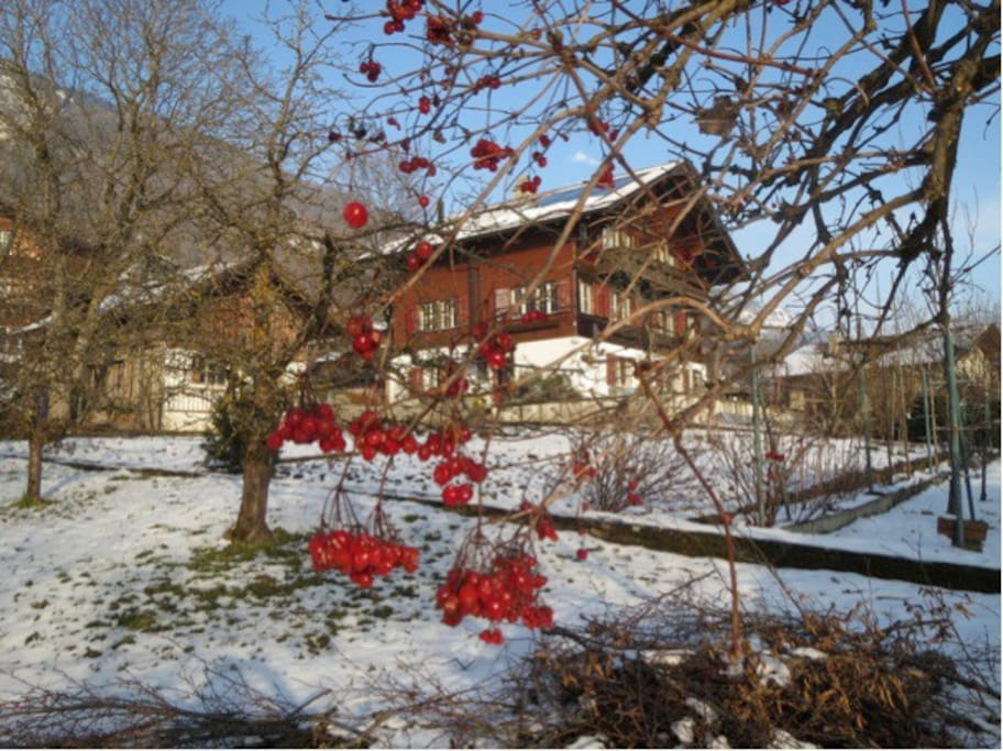 Das Haus befindet sich 10 Fussminuten vom See.