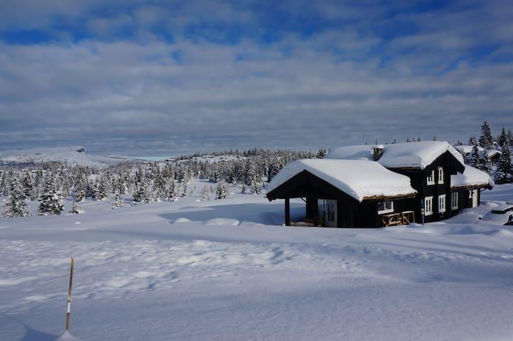 Skeikampen - stor og lun hytte - Skeikampen - Cabin