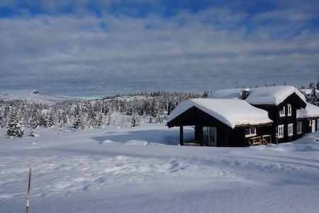 Skeikampen/Austlid, 850 moh - Cabin