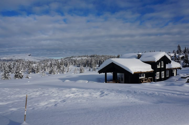 Skeikampen, flott hytte for leie i sommer