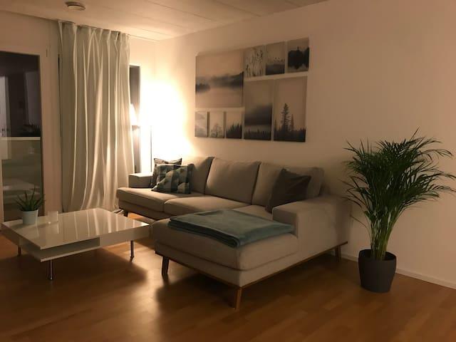 Zimmer in grosser Wohnung – nähe Aarau