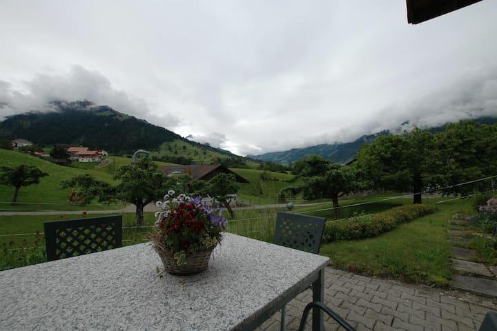 Comfortabel appartement op BG. Fijn terras met vrij uitzicht op de Blümlisalp