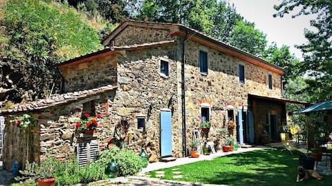 Tananei, la Toscana più autentica - camera API