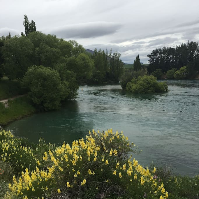 Clutha river showing walking/biking track and swimming hole 10 metres from my front gate