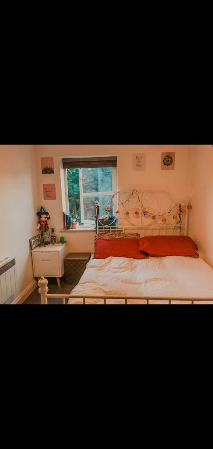 Clean, Cosy Private Room Very Cheap Price