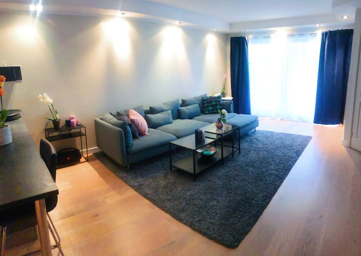 Central, modern 70 sq/m -with balcony -by a park.