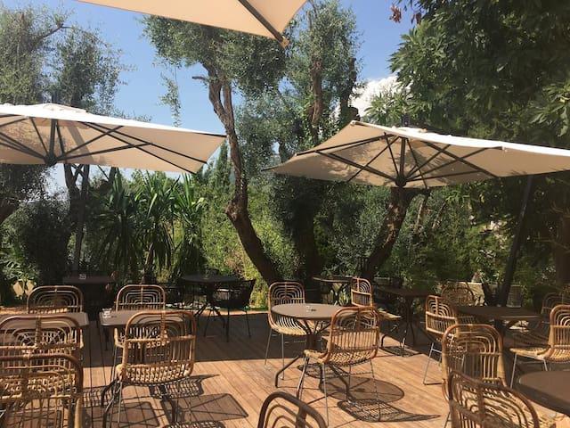 Hôtel Avocado Chambre Simple n°1 -pour 1 personne