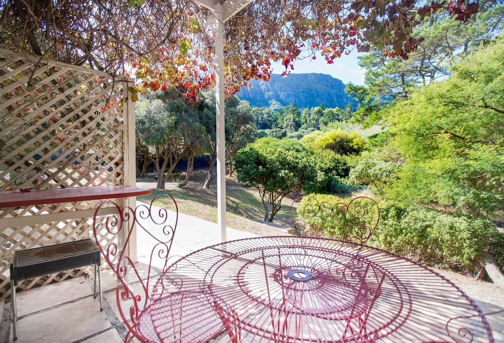 Private, vine covered patio overlooking forest and onto Table Mountain National Park.