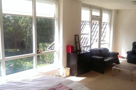 Bright large room in peaceful villa - Utrecht