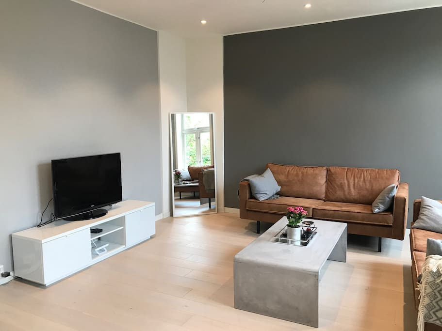Big luxury apartment with parking in city center for Big city apartments