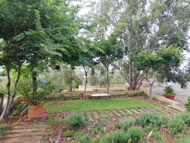 Garden in front of Coucal Cottage where you can enjoy a braai.