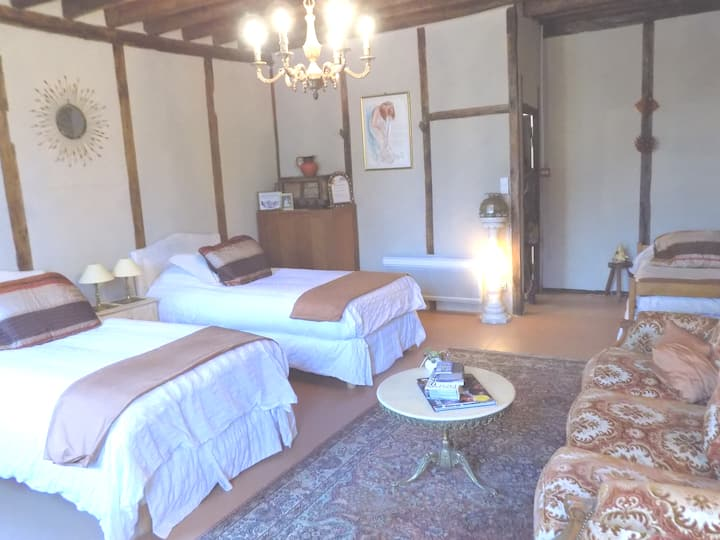 Large room 4 single beds +1 couch BBQ & Lake,Tuffé