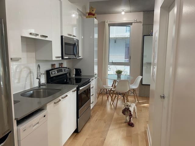 Beautiful Central Montreal Studio near EVERYTHING