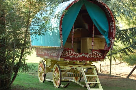 Bow top Open lot Gypsy Wagon - Essex - Cabin