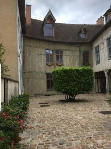 """Bienvenue à Troyes! Welcome!  Entrée privative et sécurisée de votre logement et studio le """"Comte des hirondelles"""" avec cour pavée et arborée"""